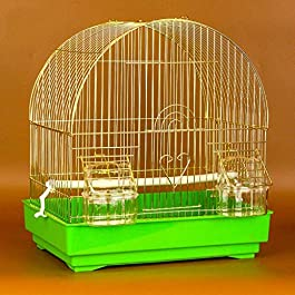 DHTOMC Birdcage Hanging Bird Cage for Small Parrot Conure Finch Canary Budgie Lovebird Bird Cage, Portable Small Sized Birds Travel Cage Aviary (Color : Green) Xping
