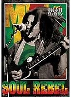 キャラクターポスター、映画ポスター、BOB MARLEY ボブマーリー (絶版3D)Soul Rebel 3D ポスター A4サイズ(30x21cm)