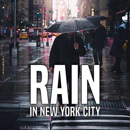 Rain for Deep Sleep & The Nature Soundscape