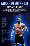 Muskelaufbau für Anfänger: Von der Couchpotato zum Traumkörper - egal ob im Gym oder ohne...