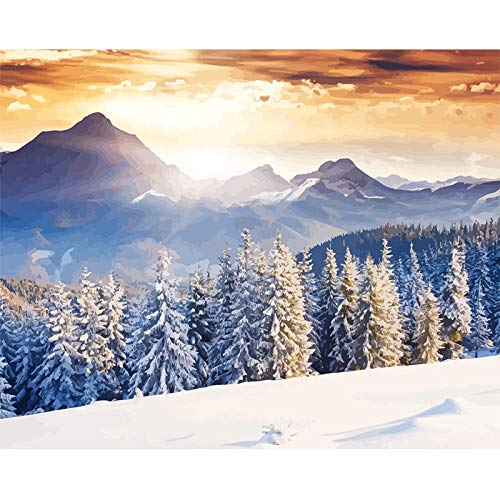 DIY Malen Nach Zahlen Winterlandschaft Vorgedruckt Leinwand Anfänger Hand gemalt Ölgemälde Geschenk für Erwachsene Kinder Kits Home Haus Dekor 40x50cm Rahmenlos