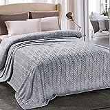 Whale Flotilla Flannel Fleece Twin Size(90x66 Inch) Lightweight Bed Blanket, Soft Velvet Bedspread Plush Fluffy Coverlet Palm Leaves Design Decorative Blanket for All Seasons, Silver Grey