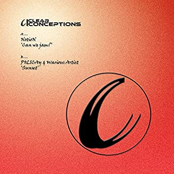 Clear Conceptions 17