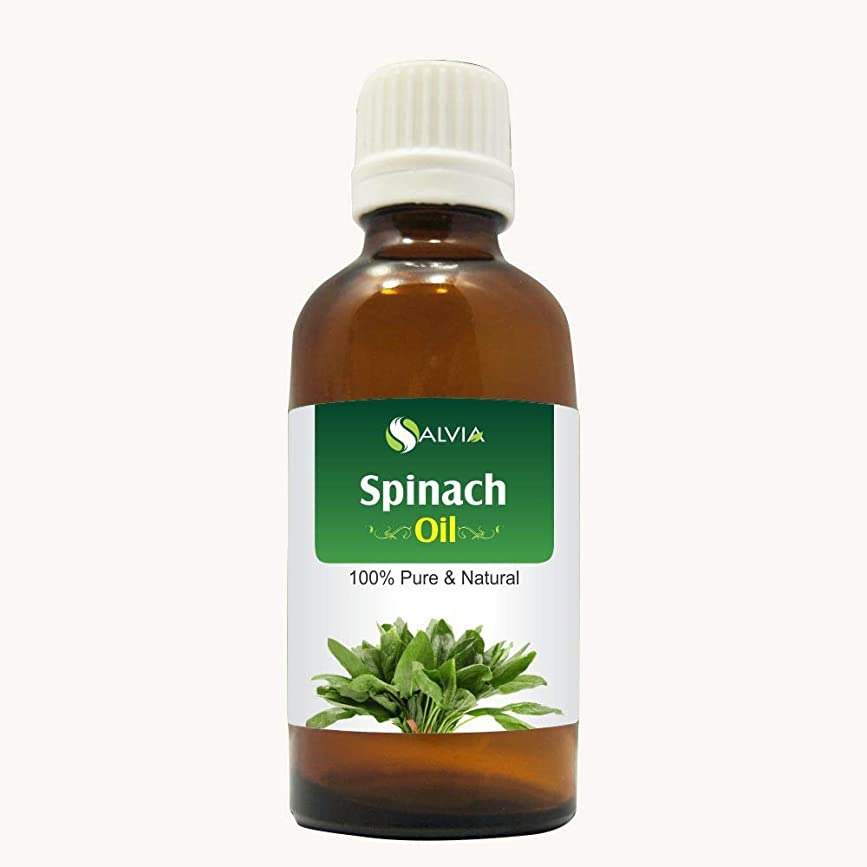 補償ボール甲虫SPINACH OIL (SPINACIA OLERACEA) 100% NATURAL PURE CARRIER OIL 50ML