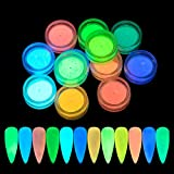 QIMEIYA 12 Colors Neon Colors Phosphorescent Luminescent Fluorescent Powder Glow In Dark Nail...