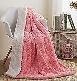 Faux Fur Pink Throw Blanket - DaDa Bedding Luxury Rose Buds Blushing Lavish Soft Warm Cozy Plush Reversible Sherpa - Bright Vibrant Embossed Textured Rosey Baby Pink & White - 90' x 90'