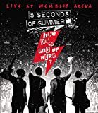 5 Seconds Of Summer - How Did We End Up Here?
