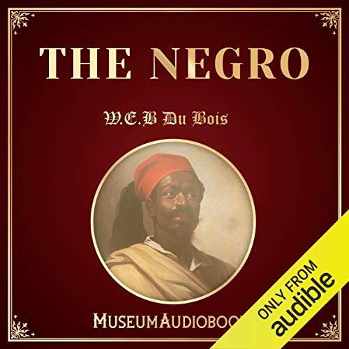The Negro audiobook cover art
