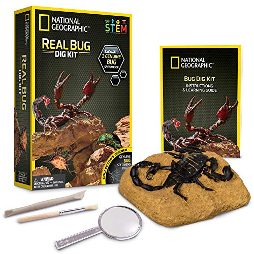 National Geographic - Kit de fouille - 3 insectes à extraire
