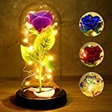 Enchanted Purple Silk Rose That Lasts Forever with Led Lights in Glass Dome Beauty and The Beast Rose Kit Creative Gift for Valentine's Day Mother's Day Christmas Anniversary Birthday Thanksgiving Day