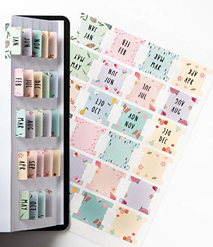 DiverseBee Laminated Planner Monthly Tabs, 24 Peel and Stick Tabs for Notebooks (12 Month Tabs and 12 Blank Tabs), Calendar Monthly Tab Stickers for Planners, Monthly Dividers (Assorted)