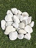 Galets Blancs 30 à 50 mm par 5 kgs