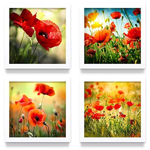 Mohnblumen Wand-Bilder mit weißen Bilder-Rahmen, mehrteiliges Bilder-Set, je 32x32cm klein, Fine Art Druck auf Forex für eine Moderne Optik. Deko für Wohnzimmer Küche Flur Schlafzimmer