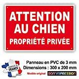 PANNEAU ATTENTION AU CHIEN - PROPRIETE PRIVEE - 300 x 200 mm en PVC + 4 trous pour fixation (PP3 300x200mm PVC)