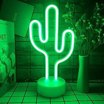 Best cactus decor Reviews