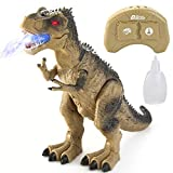 JOYIN LED Light Up Remote Control Dinosaur, Electronic RC Toys Educational Walking and Roaring Realistic T-Rex Dinosaur Toys with Mist Spray for Toddlers Boys Girls