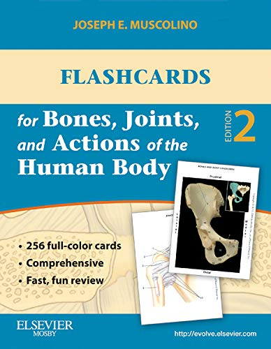 Price comparison product image Flashcards for Bones,  Joints