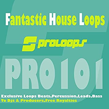 Fantastic House Loops