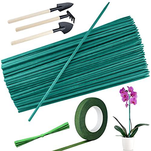 ELECLAND 100 Varillas de Soporte para Plantas de jardín, estacas Verdes para jardín con 50 Bridas metálicas, Juego de 3 Herramientas...
