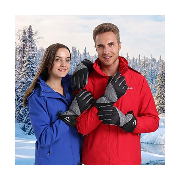 Lapulas Winter Ski Gloves for Mens Womens Touchscreen Waterproof Gloves Snowboard Snow Thermal Cold Weather Warm Gloves