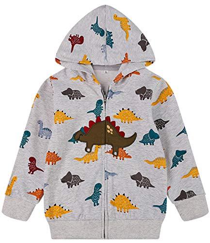 Toddler Boys Jacket Cartoon Dinosaur Animal Zipper Packaway Spring Autumn Hoodies Sport Coat for Kids 1-7T(Cool Dinosaur-8046 120)