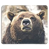 dealzEpic - Animal Art Mousepad - Natural Rubber Mouse Pad Printed with A Bear in The Wild - Stitched Edges - 9.5x7.9 inches