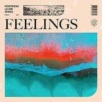 Feelings (with Zeeba)