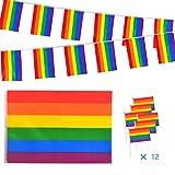 ZERHOK Bandera Arcoiris 14pcs Banner de Gay símbolo de Las Personas Lesbianas, Gay, Bisexual y transgénero Movimientos sociales LGBT para Orgullo Festival Carnival Desfile Gay decoración del hogar