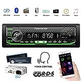 PolarLander Auto Radio Audio Multimédia Auto Stéréo Contrôle Vocal et appels...