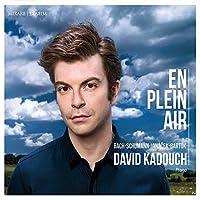 En Plein Air by David Kadouch