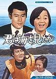 君は海を見たか コレクターズDVD【昭和の名作ライブラリー 第68集】[DVD]