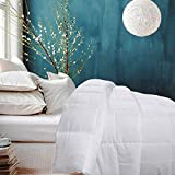 Besfor Hotel Collection Luxury Down Alternative Quilted Twin Comforter - All Season -Plush Microfiber Fill - Machine Washable -Stand Alone Comforter (White, Twin)