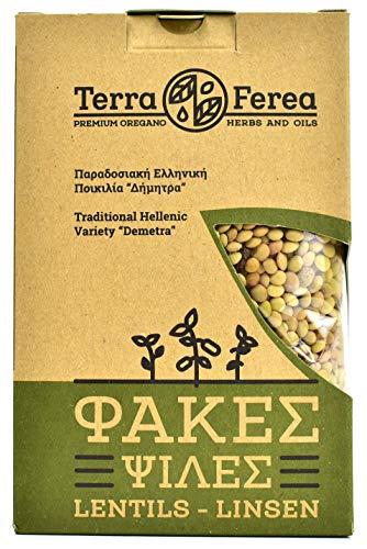 Griechische braune Linsen von Terra Ferea | Neue Ernte einer traditionellen griechischen Sorte (500)