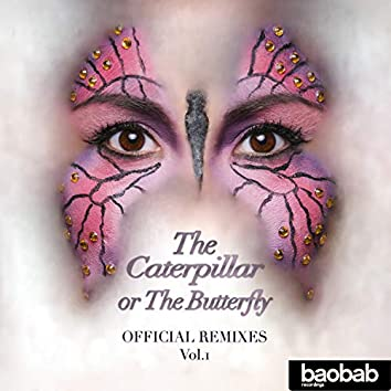 The Caterpillar or The Butterfly (Remixes), Vol. 1