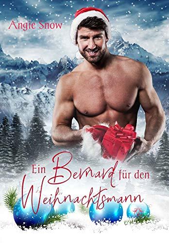 Ein Bernard für den Weihnachtsmann