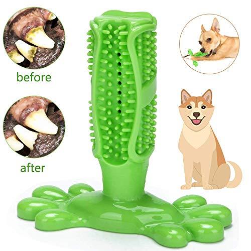 ASANMU Hundezahnbürste 100% Natürlich Hunde Zahnbürste, Hundespielzeug Kauspielzeug Zahnpflege aus Naturkautschuk, Welpen Zahnreiniger Massagegerät Zahnreinigung Spielzeug für Kleine Medium Hunde