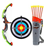 Toysery Bow and Arrow for Kids with LED Flash Lights - Archery Bow with 6 Suction Cups Arrows, Target, and Quiver, Practice Outdoor Toys for Children Above 3-12 Years Old