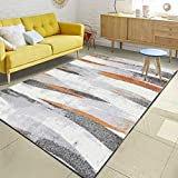 DPJS Tapis Mode Simple Orange Gris Rayures Abstraites Polyester Chambre Salon De Cuisine Paillasson,120x160cm