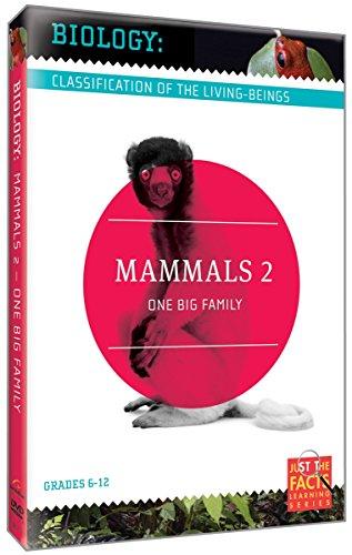 Biology Classification: Mammals 2 [DVD] [Region 1] [NTSC] [US Import]