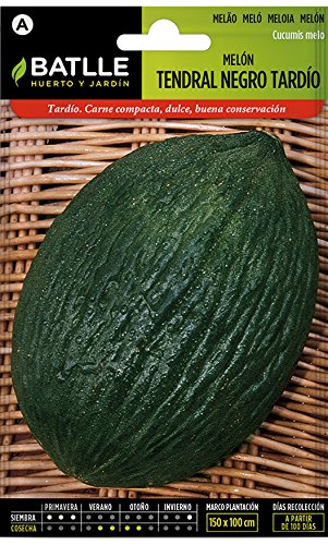 Batlle groentezaden - spaart honingmeloen Tendral zwart tardío (245 zaden)