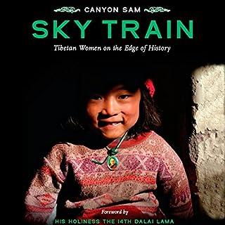 Sky Train audiobook cover art