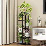 Plant Stand Flower Holder - Metal 5 Tie 6 Pot Multiple Planter Shelf Display Rack Storge Organizer for Balcony Garden Indoor Outdoor Corner (Black)