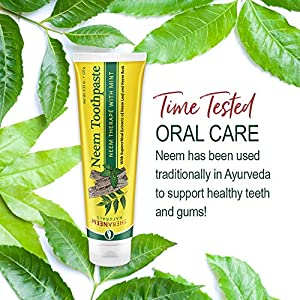 TheraNeem Neem Therape Toothpaste, Mint | Supports Healthy Teeth, Gums & a Fresh Mouth | No Fluoride & Vegan | 4.23 oz | 2pk