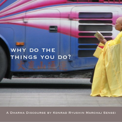 Why Do the Things You Do? cover art