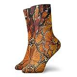 QUEMIN Butterfly Monarch Orange Wings Calcetines cortos deportivos clásicos de 30 cm / 11,8 pulgadas adecuados para hombres y mujeres