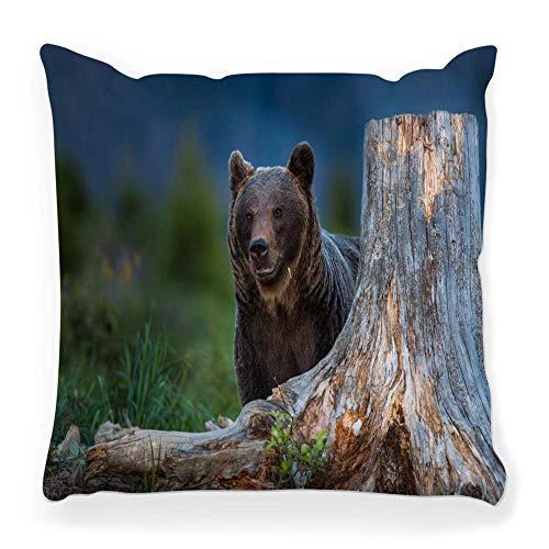 Funda de Cojine Funda de almohada decorativa Eslovaquia Big Carnivore Cub Dangerous Evening Fauna Finland Grass Grizzly Hill Enorme Throw Cojín 45X45CM