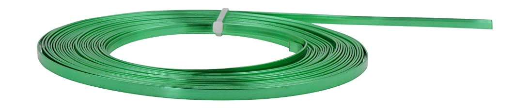 Mandala Crafts Flat Aluminum Wire for Bezel, Sculpting, Armature, Jewelry Making, Gem Metal Wrap, Gardening; Anodized Colored and Soft (Green, 5mm Wide 33 Feet Long 18 Gauge)