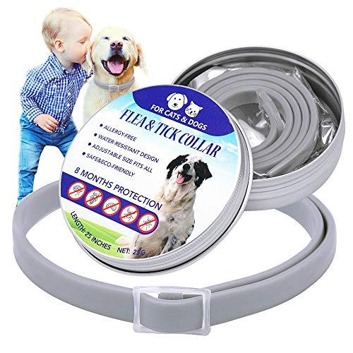 ATIN Justerbar liten medium stora hundar loppa och fästinghalsband 8 månaders skydd
