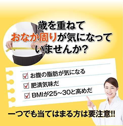 ハーブ健康本舗シボヘール120粒入り[機能性表示食品]