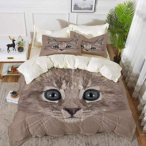 161 Animal,Portrait of Domestic Cat Cute Face Baby Kitten Pet Whiskers Fluffy Feline,Umber,Hypoallergenic Microfibre Duvet Cover Set 200 x 200cm with 2 Pillowcase 50 X 80cm